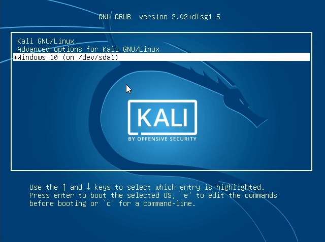 How to dual boot windows 10 and kali linux final