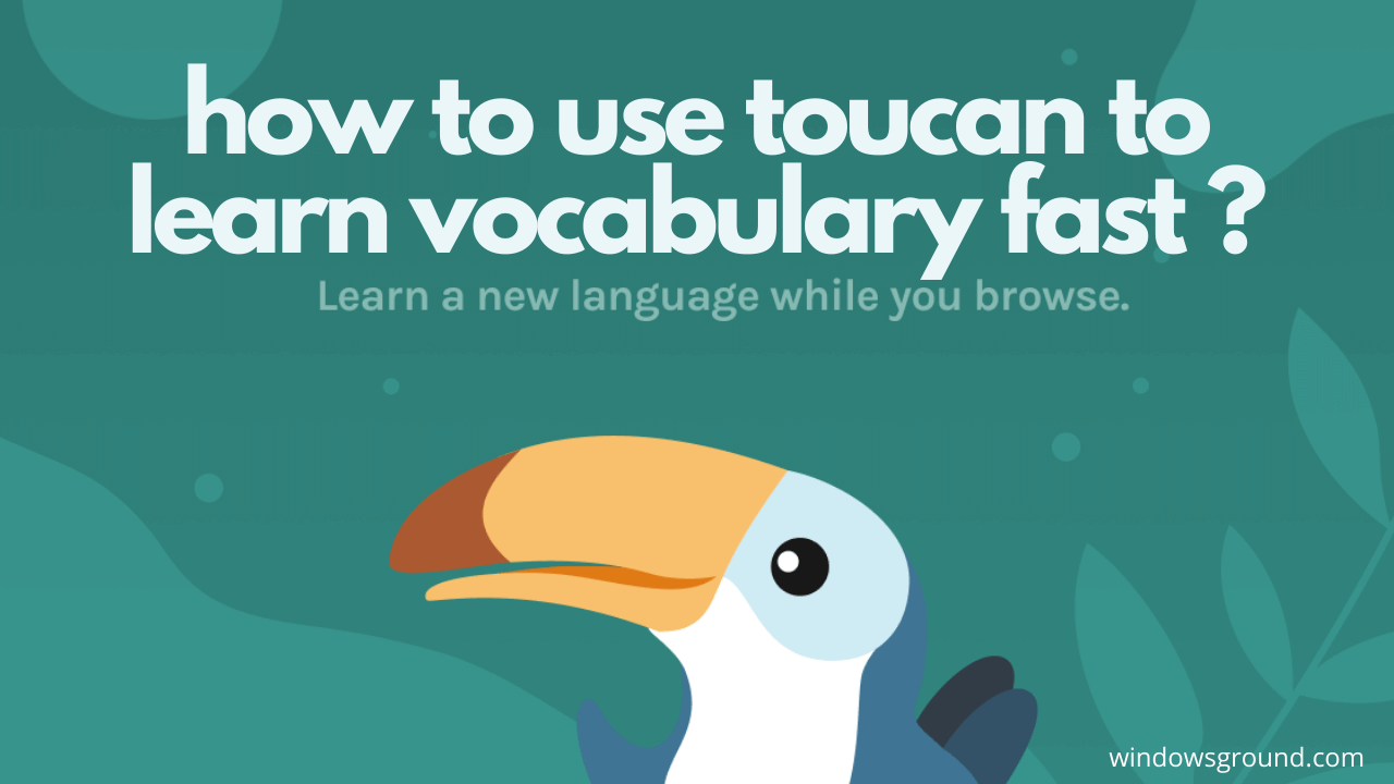 how to use toucan language extension to learn vocabulary fast